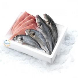 Fish Box Gallura